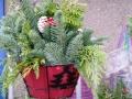 hanging basket greenery.jpg