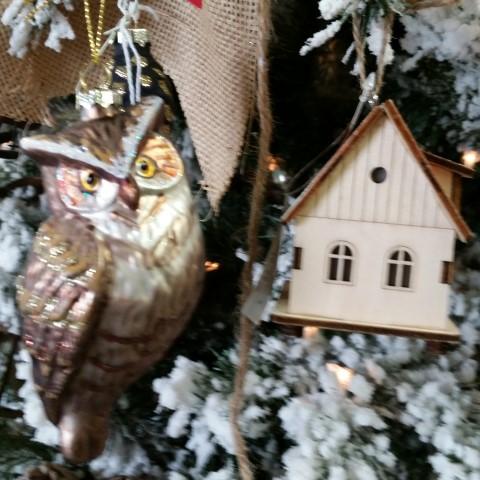 Critter Tree Owl & House